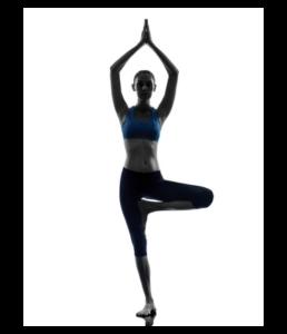 featured asana vrksasana  yogita yoga